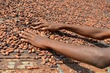 CSR & Sustenabilitate: Mondelēz International accelerează ritmul de atingere a  obiectivelor de sustenabilitate și stare de bine
